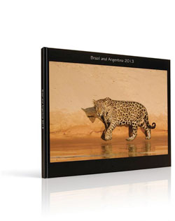 Jaguar Photo Book